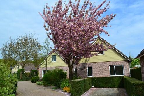 Bungalowpark De Riethorst